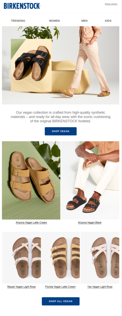 Birkenstock Email Us Jan 6 2021